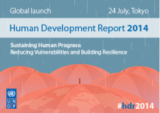 Human Development Report 2014 English web_banner_fr_0